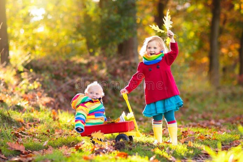 Jonge geitjesspel in de herfstpark Kinderen openlucht in daling stock fotografie