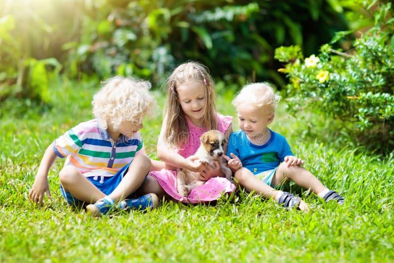 Jonge geitjesspel met puppy Kinderen en hond in tuin royalty-vrije stock afbeeldingen