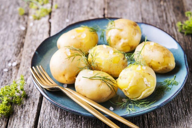 Jonge gekookte aardappels met dille en olijfolie stock afbeeldingen