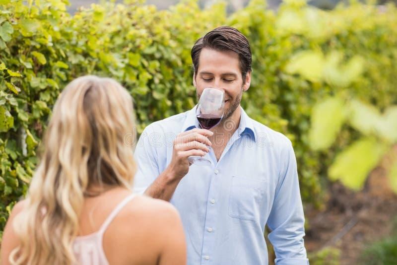 Jonge gelukkige paar proevende wijn stock foto