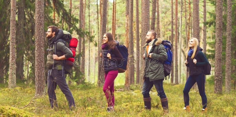 Jonge gelukkige vrienden die in bos lopen en van de goede herfst genieten stock foto