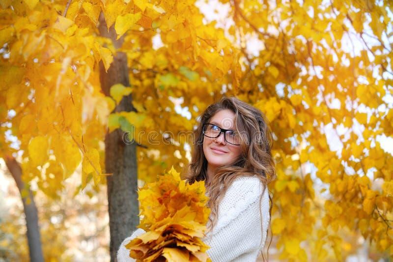 Jonge glimlachende meisje-student in glazen dicht omhoog stock afbeeldingen