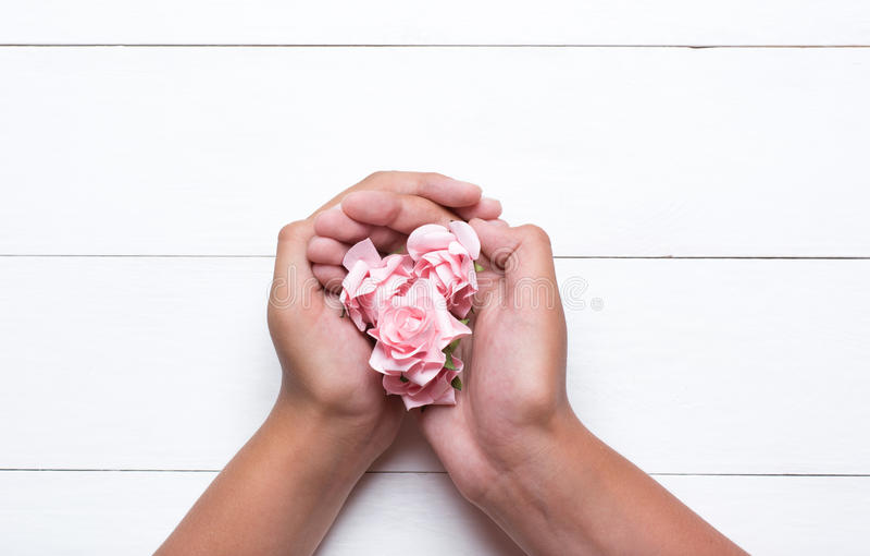 Jonge handen die roze rozen over witte houten lijst houden stock foto