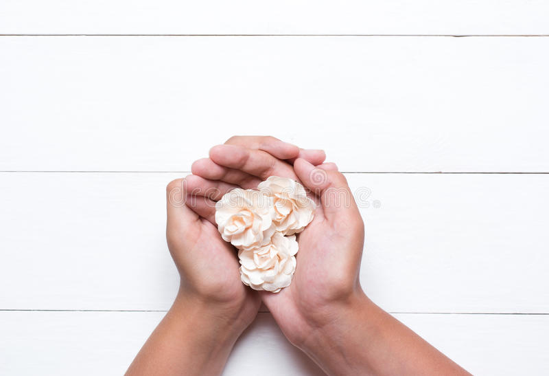 Jonge handen die witte rozen over witte houten lijst houden royalty-vrije stock afbeelding