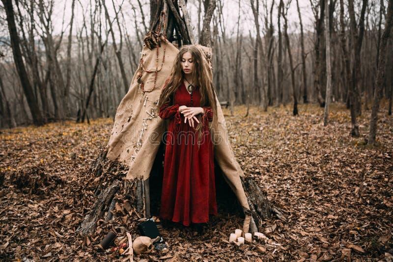 Jonge heks in het de herfstbos stock afbeeldingen