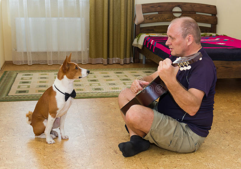 Jonge hond en rijpe mens die muziek samenstellen royalty-vrije stock afbeelding