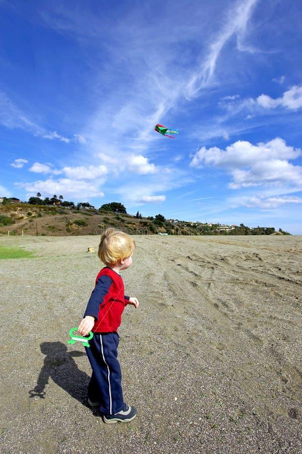Jonge jongen die een vlieger op een zonnige dag vliegt stock afbeeldingen