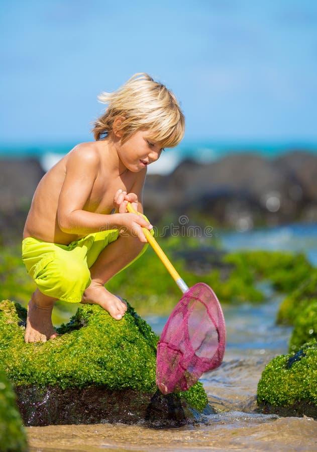 Jonge jongen die pret op tropcial strand hebben royalty-vrije stock afbeelding
