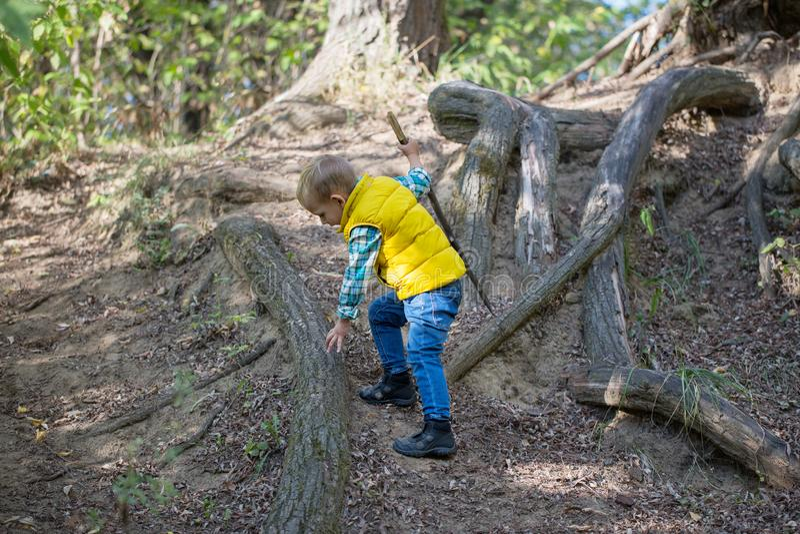 Jonge jongen met een stok alleen klimmen omhoog de berg royalty-vrije stock afbeelding