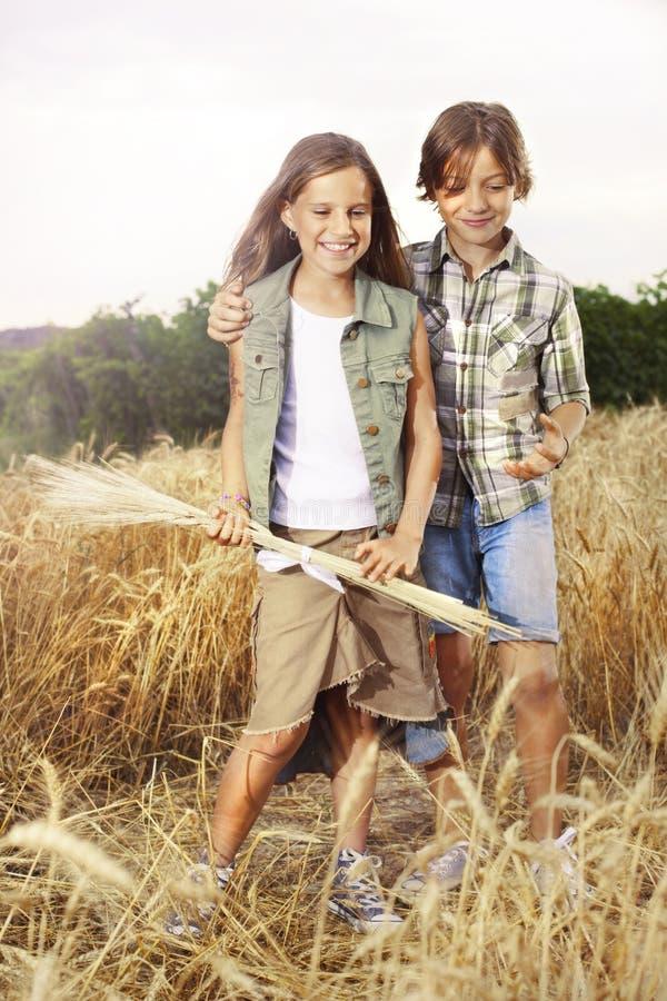 Jonge jongens die pret op het tarwegebied hebben stock fotografie
