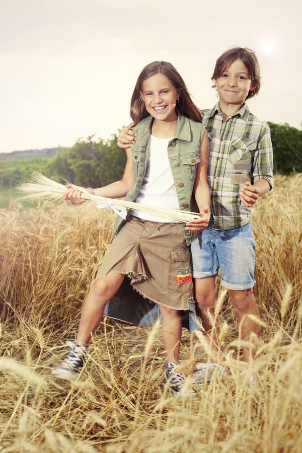 Jonge jongens die pret op het tarwegebied hebben stock foto