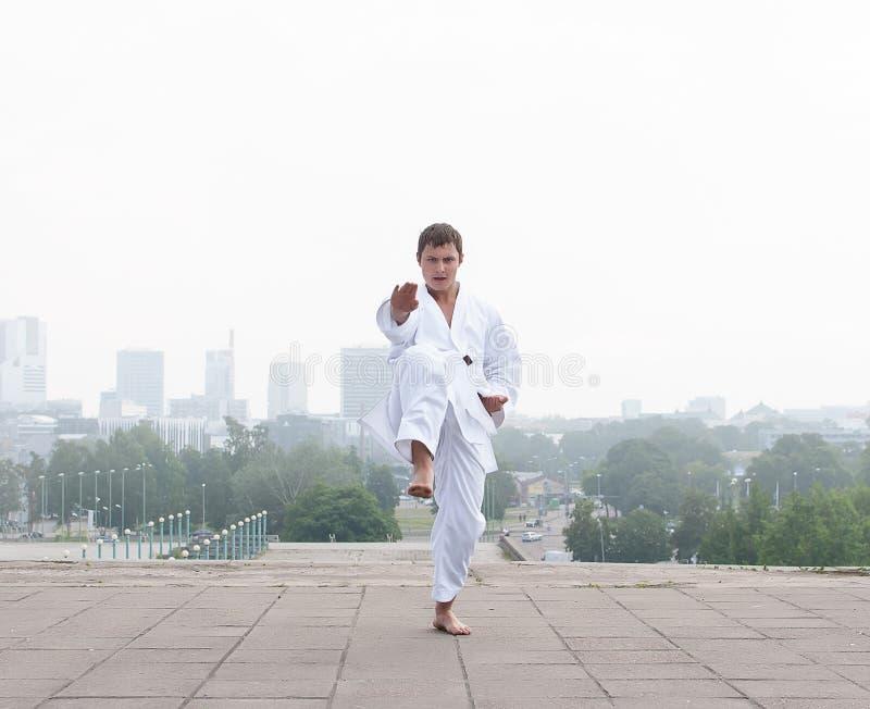 Jonge karatemeester royalty-vrije stock foto's