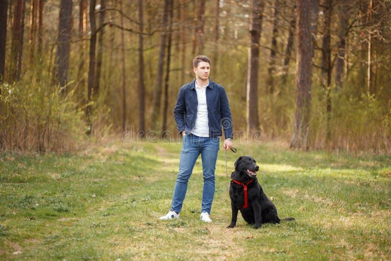 Jonge kerel met een hond in een park in openlucht stock foto's