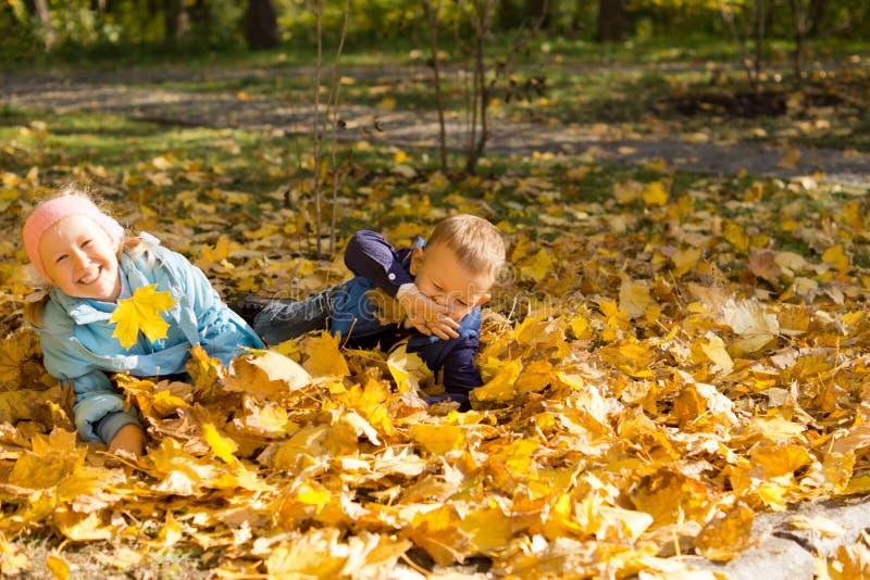 Jonge kinderen die in de herfstbladeren spelen royalty-vrije stock fotografie