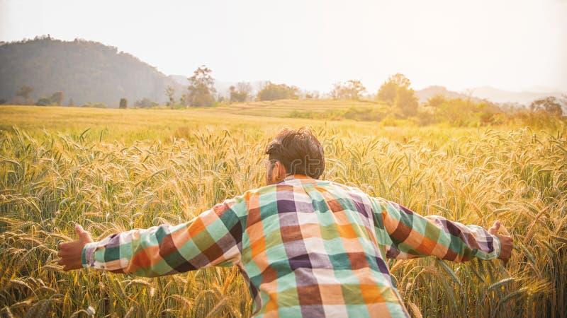 Jonge knappe landbouwer die zich op tarwegebied bevinden royalty-vrije stock afbeelding