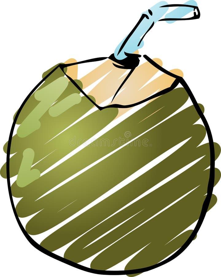 Jonge kokosnoot stock illustratie