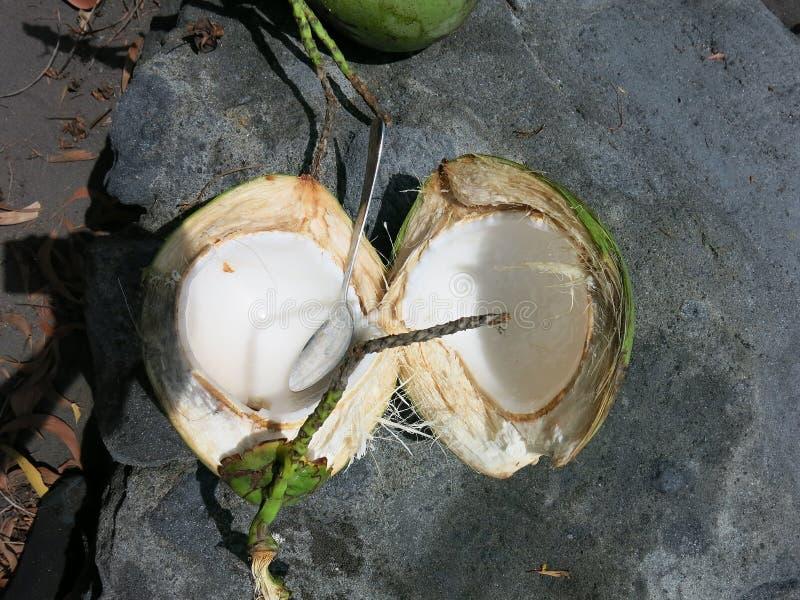 Jonge kokosnoot met verse pulp stock afbeeldingen