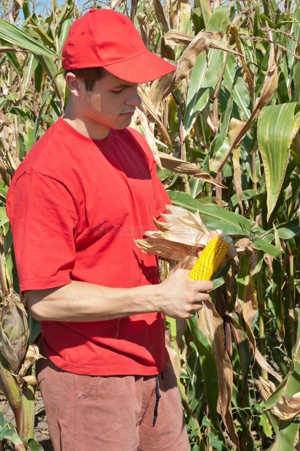 Jonge landbouwer royalty-vrije stock afbeelding