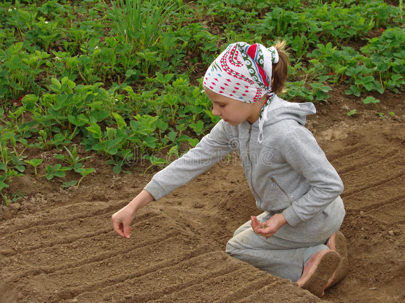 Jonge landbouwer royalty-vrije stock fotografie
