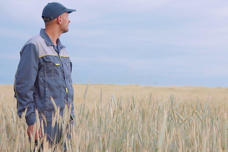 Jonge landbouwer dichtbij een roggegebied De ruimte van het exemplaar royalty-vrije stock foto's