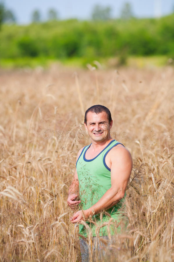 Jonge landbouwer op zijn tarwegebied stock foto's