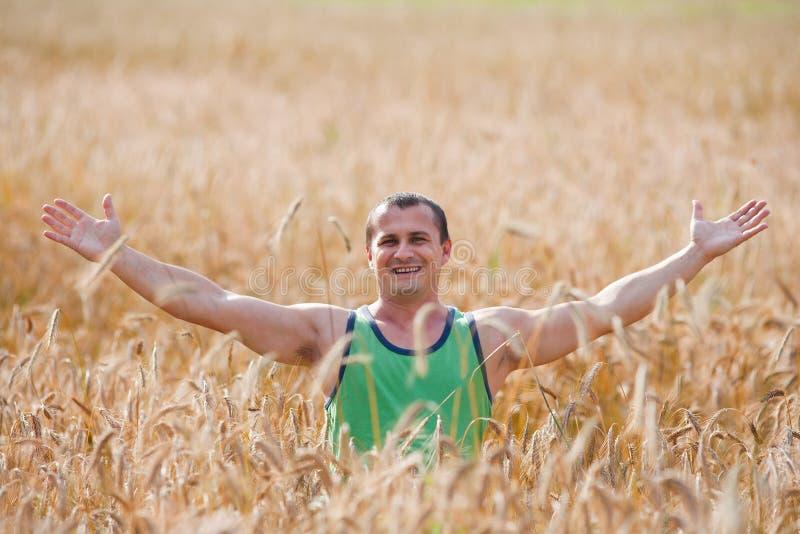 Jonge landbouwer op zijn tarwegebied stock foto