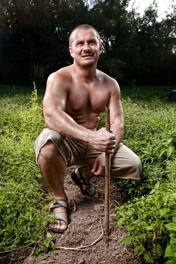 Jonge landbouwer in zijn aardappeltuin royalty-vrije stock afbeeldingen