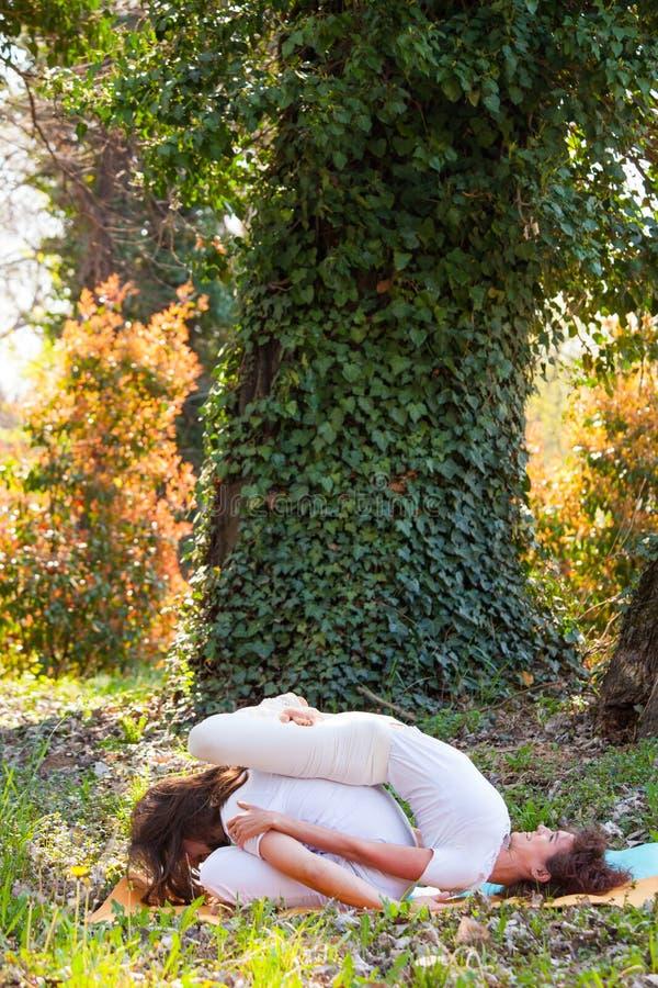 Jonge man en vrouwen de yoga van de praktijkpartner openlucht in houten de zomerdag stock foto