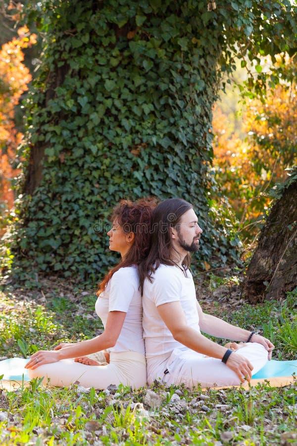 Jonge man en vrouwen de yoga van de praktijkpartner openlucht in houten de zomerdag royalty-vrije stock foto