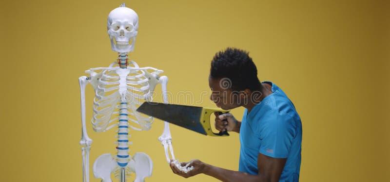 Jonge man legt menselijke anatomie uit royalty-vrije stock fotografie
