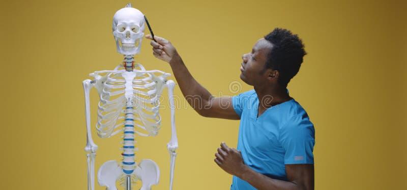 Jonge man legt menselijke anatomie uit royalty-vrije stock foto