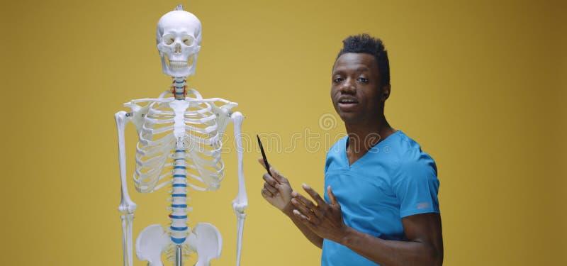 Jonge man legt menselijke anatomie uit stock afbeeldingen