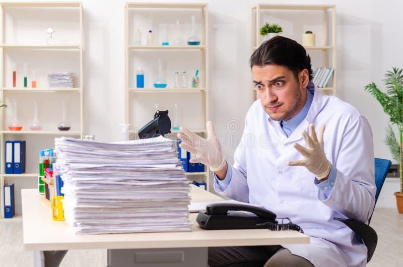 Jonge mannelijke chemicus die in het laboratorium werken royalty-vrije stock fotografie