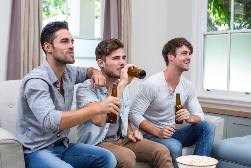 Jonge mannelijke vrienden die bier drinken terwijl het letten van op TV stock afbeeldingen