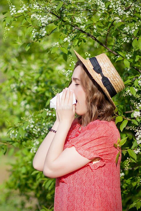 Jonge meisjes blazende neus en het niezen in weefsel voor bloeiende boom Seizoengebonden allergenen die mensen be?nvloeden E stock afbeelding