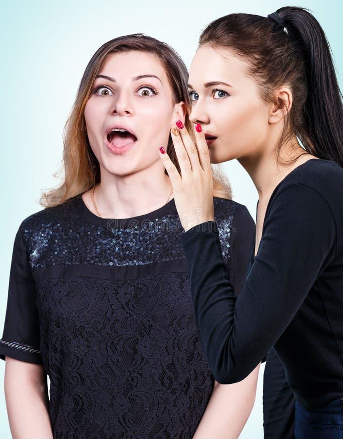 Jonge meisjes die één of ander geheim roddelen stock afbeelding