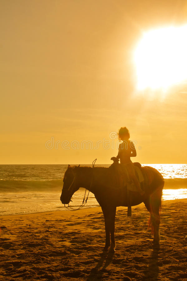 Jonge meisjeshorseback die op het strand bij zonsondergang berijdt stock afbeeldingen