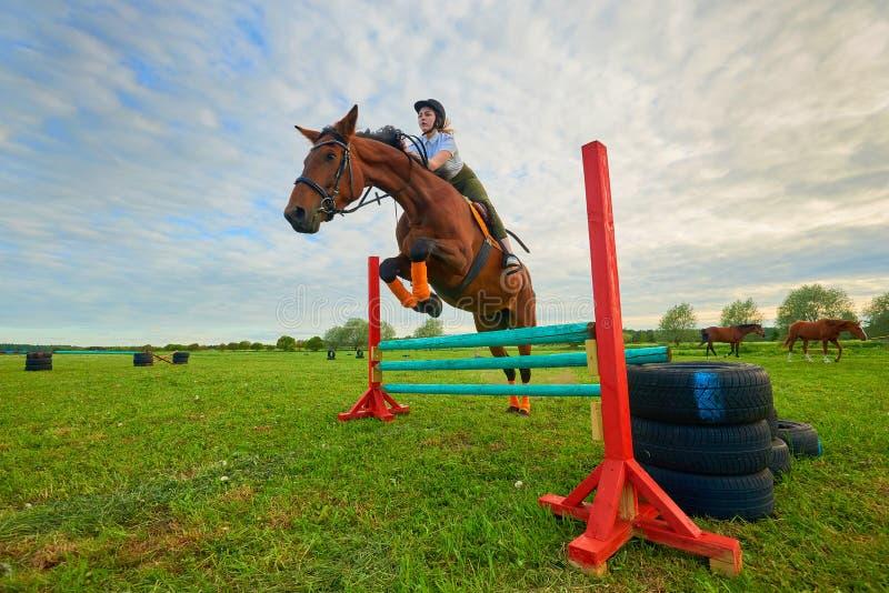 Jonge meisjesjockey en haar paardverbindingsdraad stock foto's