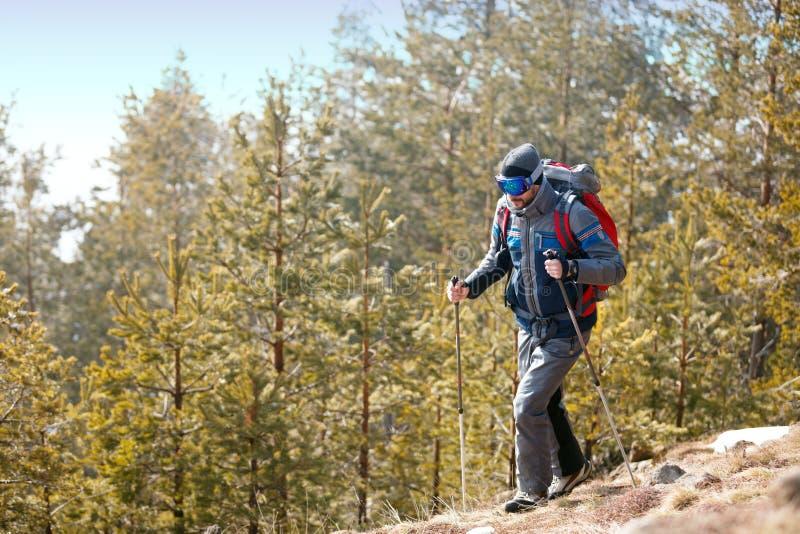 Download Jonge Mens Die In Bosbergen Wandelen Stock Foto - Afbeelding bestaande uit heuvels, actief: 107706452