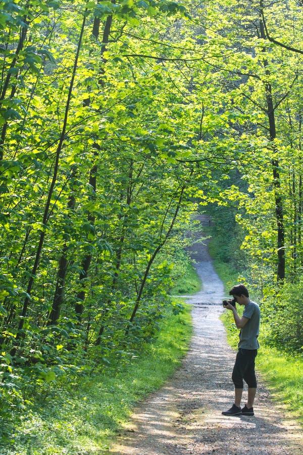 Jonge mens die foto's in een bos nemen stock foto's