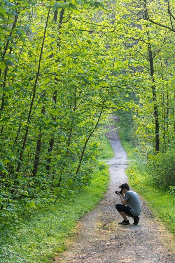 Jonge mens die foto's in een bos nemen royalty-vrije stock fotografie