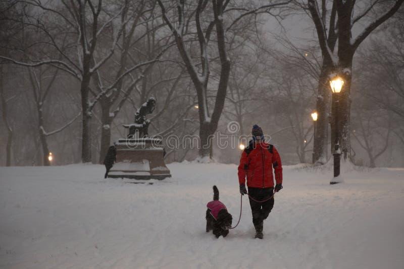 Jonge mens die met zijn hond tijdens blizzard lopen royalty-vrije stock foto's
