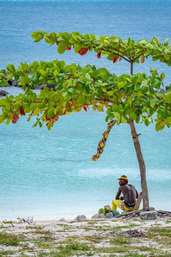 Jonge mens die rasta/rastafarian-hoed op strand dragen royalty-vrije stock afbeeldingen