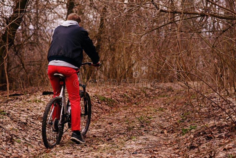 Jonge mens met rugzak berijdende fiets op bergweg in het bos stock afbeelding