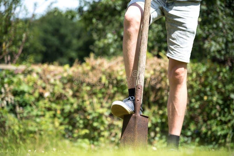 Jonge mens met schop gravend gat in tuin met een spade stock foto