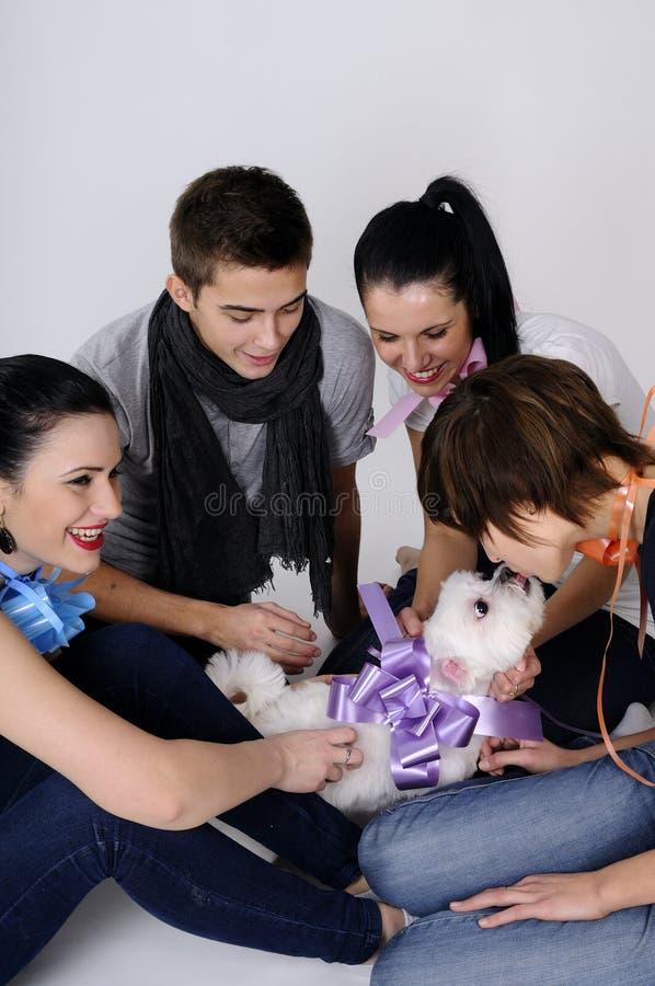 Jonge mensen die met hond spelen royalty-vrije stock foto