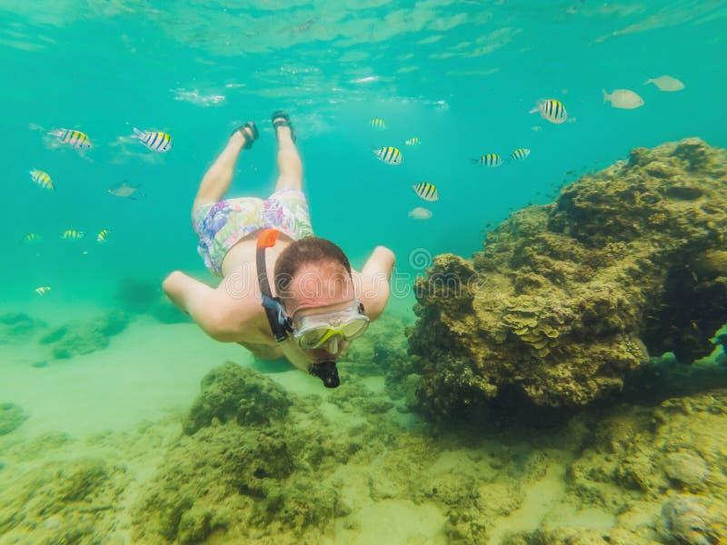 Jonge mensen die onderzoekend de onderwaterachtergrond van het koraalriflandschap in de diepe blauwe oceaan met kleurrijke vissen royalty-vrije stock foto's