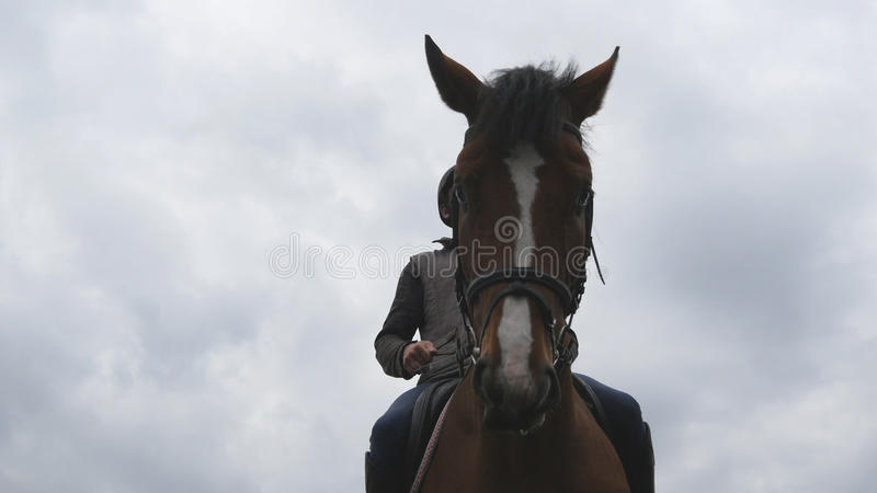 Jonge mensenhorseback openlucht berijden Mannelijke jockey die een paard berijden op donkere bewolkte dag Mooie regenachtige heme royalty-vrije stock foto's