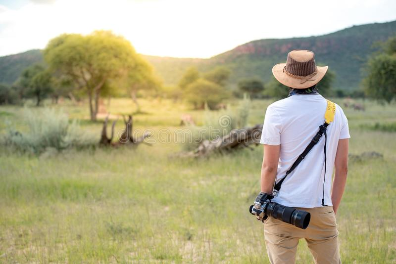 Jonge mensenreiziger die zich in safari bevinden die het wilddier bekijken stock afbeeldingen
