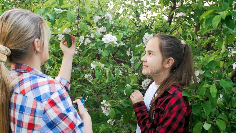Jonge moeder die haar dochter onderwijzen hoe te om takken met tuinsnijders te snijden stock foto